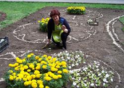 Как посадить цветы на клумбе красиво
